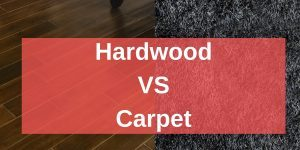 Hardwood Vs Carpet